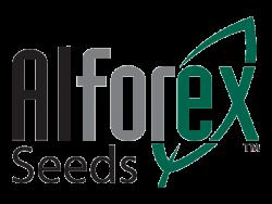 Alforex Seeds LLC
