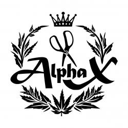 Alpha X Labor